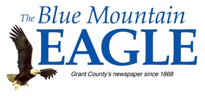 Blue Mountain Eagle Logo